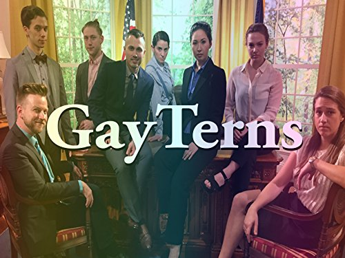 GayTerns - Season 1