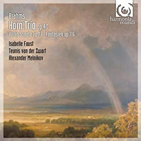 Trio for violin, horn and piano in E-Flat Major, Op. 40: IV. Finale. Allegro con brio