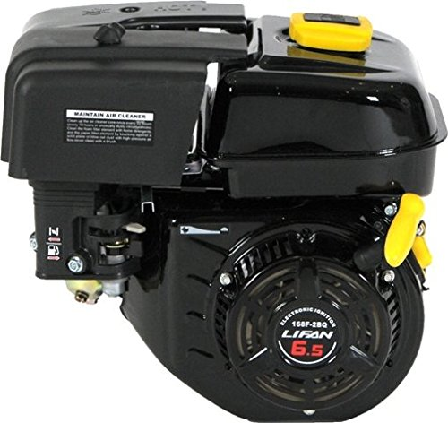 Lifan LF168F-2BQ 6.5 HP 196cc 4-Stroke OHV Industrial Grade Gas Engine with Recoil Start and Universal Mounting Pattern (5 Hp Motor Go Kart compare prices)