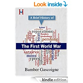 A Brief History of the First World War (HistoryWorld's Pocket History Series Book 2)