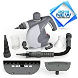 PurSteam Handheld Pressurized Steam Cleaner with 9-Piece Accessory Set Ð Multi-Purpose and Multi-Surface All Natural, Chemical-Free Steam Cleaning for Home, Auto, Patio, & More