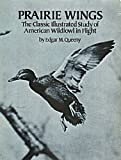 Prairie Wings: The Classic Illustrated Study of American Wildfowl in Flight