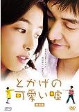 とかげの可愛い嘘 【韓流Hit ! 】 [DVD]