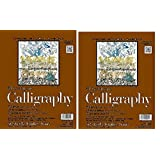 Strathmore 400 Series Tape Bound Calligraphy Pad 8 1/2 x 11 Inches Sheets, (ST405-11) 2 Pads of 50 (Tamaño: 8.5-x-11-Inch)