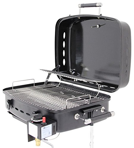 Flame King (YSNHT400) RV Mounted BBQ Motorhome Gas Grille (Rv Hanging Grill compare prices)