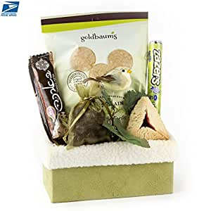 Amazon.com : Winter Garden Mishloach Manos Purim Gift - Oh! Nuts