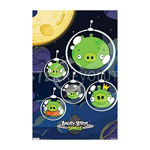 Angry Birds Space Pigs Video Game Poster Print - 22x34
