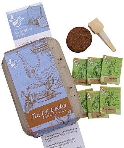 Garden In The Koop Tea Pot Box Heirlooom Seed Kit, 6-Cell (Teapot Kit compare prices)