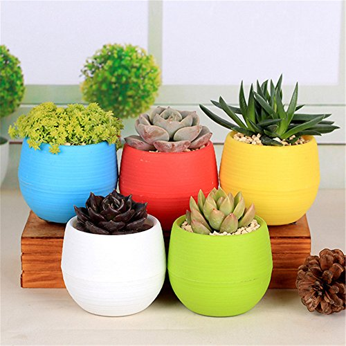 NERLMIAY 5 PCS Colorful Small Round Plastic Plant Flower Pots for Indoor and Outdoor Decoration(Red,Blue,Yellow,Green,White) (5 Plastic Flower Pots compare prices)