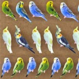 Kawaii animal bird budgie stickers