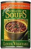 Amy's Organic Lentil Vegetable Low Salt Soup, 14.5 Ounce Cans (Pack of 6)