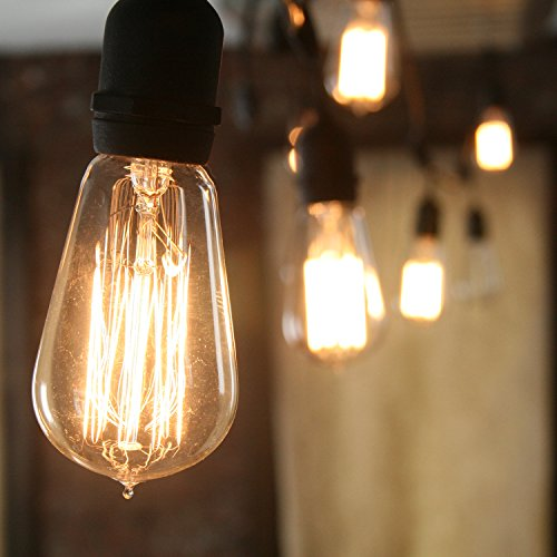 Heavy Duty Vintage Bushwick Filament 10-Bulb Connectable String Lights Home Garden Fireplaces ...