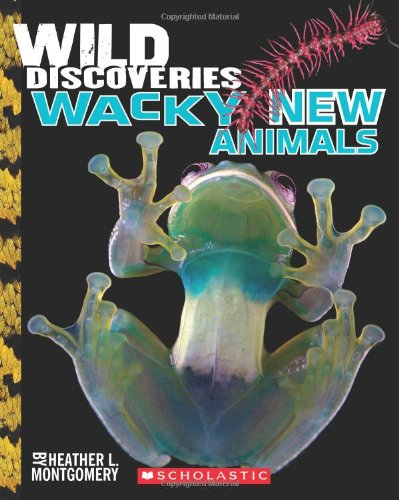 Wild Discoveries: Wacky New Animals