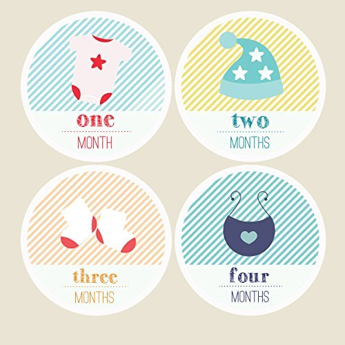 Pinkie Penguin Fashion Baby Monthly Stickers - Milestone Onesie Stickers - 1-12 Months - Baby Shower Gift
