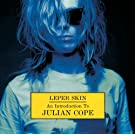 Leper skin - An Introduction To Julian Cope 1986-92