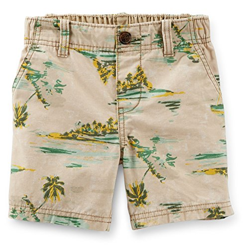 Carter's Boy's Tropical Print Canvas Shorts (9 Months) Bermuda Canvas Shorts