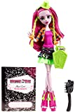 Monster High Monster Exchange Program Marisol Coxi Doll