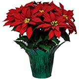 Red Poinsettias Weighted Potted Silk Arrangement by Sympathy Silks® (PT1431)