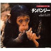チンパンジー (大自然の動物ファミリー)