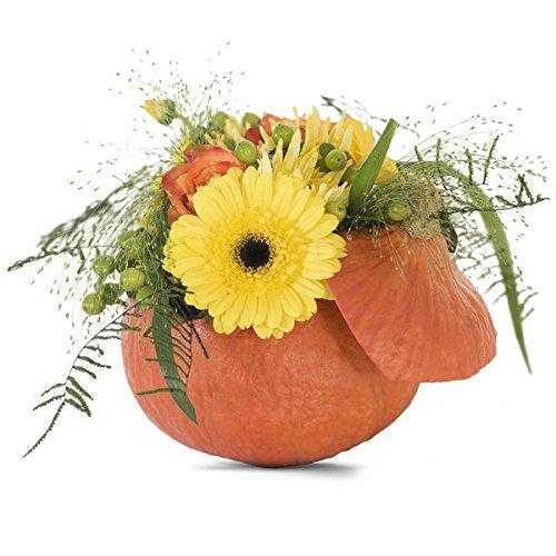 floristikvergleich.de Pumpkin Sunny – Strauß aus Gerbera, Rosen, Chrysanthemen, Johanniskraut und Hirse in einem Kürbis