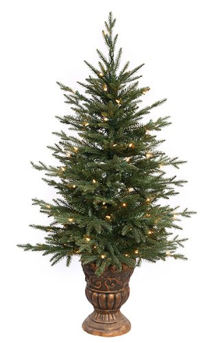 4' Pre-Lit Potted Norwood Fir Artificial Christmas Tree - Clear Lights