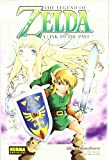 The Legend Of Zelda 4: A Link to Past Akira Himekawa