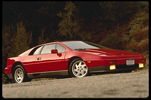 Red Lotus Esprit A4 Photo Poster Print 10x8