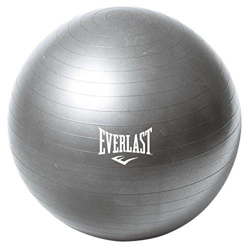everlast-65cm-burst-resistant-gym-ball
