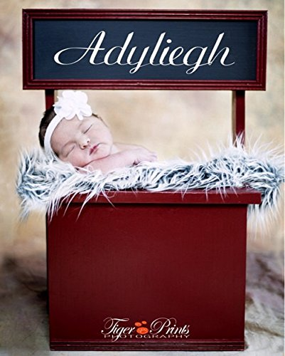Newborn Baby Kissing Booth Photography Prop