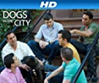 Dogs In The City [HD]: Eating House And Home [HD]