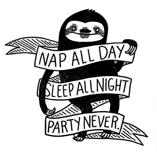 Nap-All-Day-Sleep-All-Night-Party-Never-Sloth-Phenomenauts-Sticker-Decal