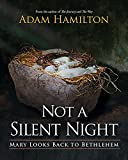 Not a Silent Night: Mary Looks Back to Bethlehem (Not a Silent Night Advent series)