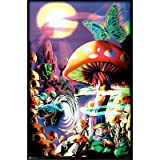 Magic Valley Trippy Mushrooms Art Poster Print - 24x36 College Blacklight Poster Print, 23x35