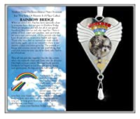 Rainbow Bridge Ornament -- Beautiful Rainbow Crystals and White Angel Wings Surround a Photo of Your Precious Pet -- Gift Boxed with the Rainbow Bridge Poem -- Pet Memorial Gift, Loss of a Pet, Pet Sympathy, Pet Remembrance