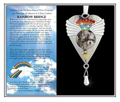 BANBERRY DESIGNS Rainbow Bridge Pet Memorial Ornament - Silver Heart Shaped Photo Ornament with Rainbow Crystals - Rainbow Bridge Poem Printed on Gift Box