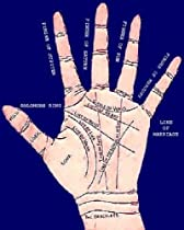 Palmistry and Beginners Guide to Palm Reading