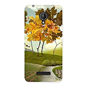Delighted Printed Way Back Case Cover for Micromax Canvas Spark Q380