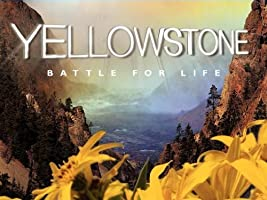 Yellowstone [HD]