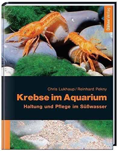 Krebse im Aquarium  Haltung und Pflege im S u00fc u00dfwasser  u2013 Bestseller Shop