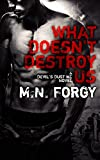 img - for What Doesn't Destroy Us (The Devil's Dust Book 1) book / textbook / text book