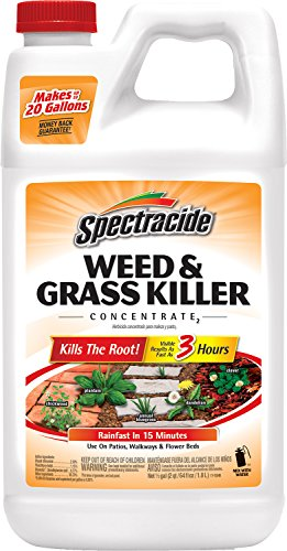 spectracide-weed-grass-killer-concentrate2-hg-56201