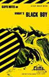 img - for Black Boy (Cliffs Notes) book / textbook / text book