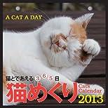 2013年 カミン COMIN 猫めくり(猫と出会える365日)スタンド付パッケージ入り
