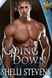 Going Down (Holding Out For a Hero Book 1)