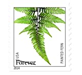 Ferns A Roll of 100 x Forever U.S. Po...