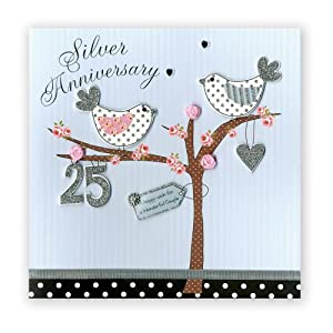 Second Nature Collectable Greeting Card For Silver 25th Wedding Anniversary Blue