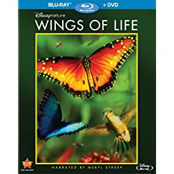 Disneynature: Wings of Life (Blu-ray / DVD)