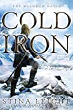 Cold Iron (The Malorum Gates)