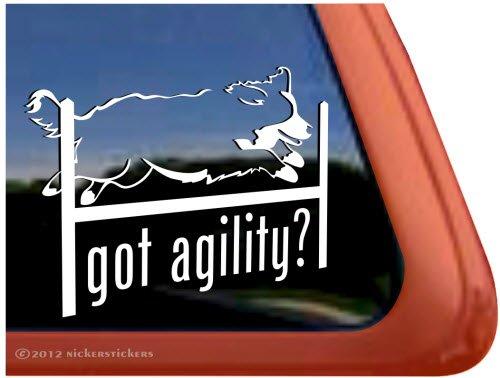 Got Agility? ~ Agility Bernese Mountain Dog Vinyl Window Decal Dog Sticker front-241238