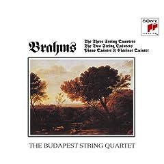 ブダペスト弦楽四重奏団によるブラームスの室内楽曲集四枚組の商品写真